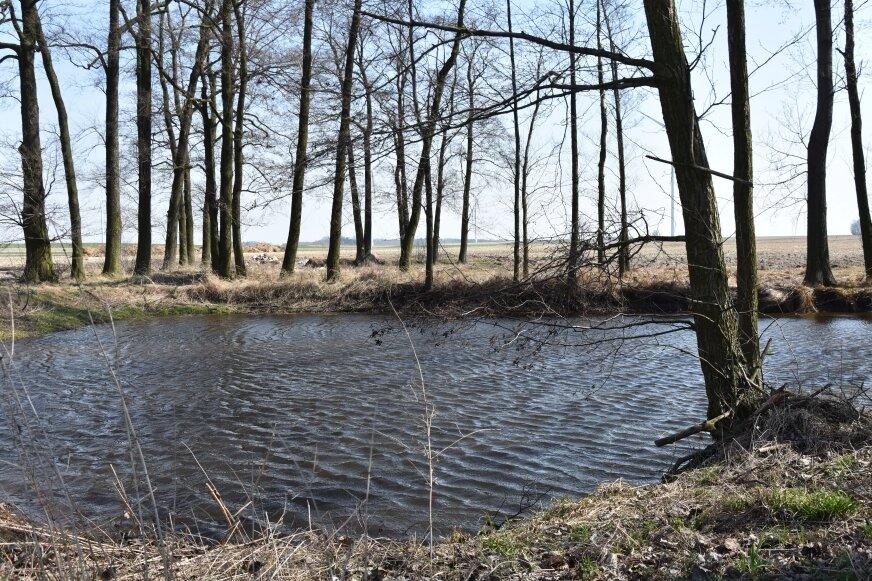 Młodego mężczyznę znaleziono nad stawem w Białyninie Podbór (gmina Głuchów).