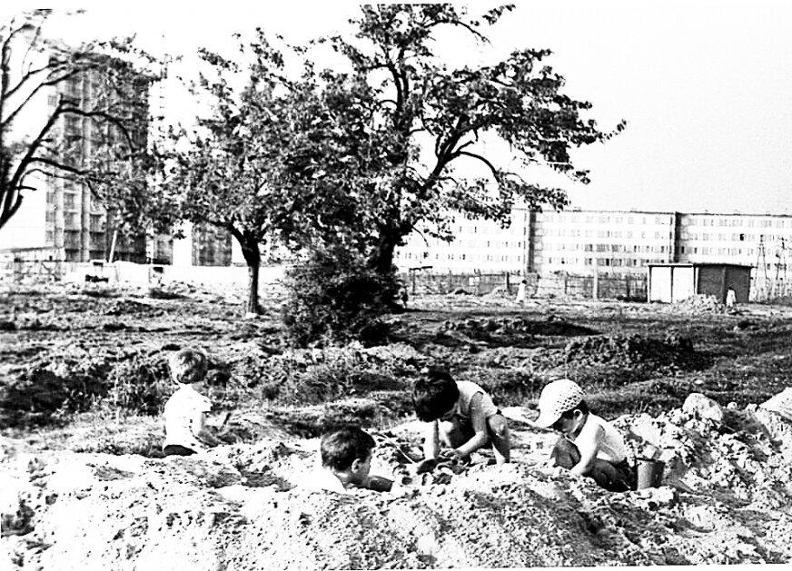 Sad, którego pozostałości do niedawna można było znaleźć na placu z siłownią przy Wańkowicza/Szarych Szeregów.