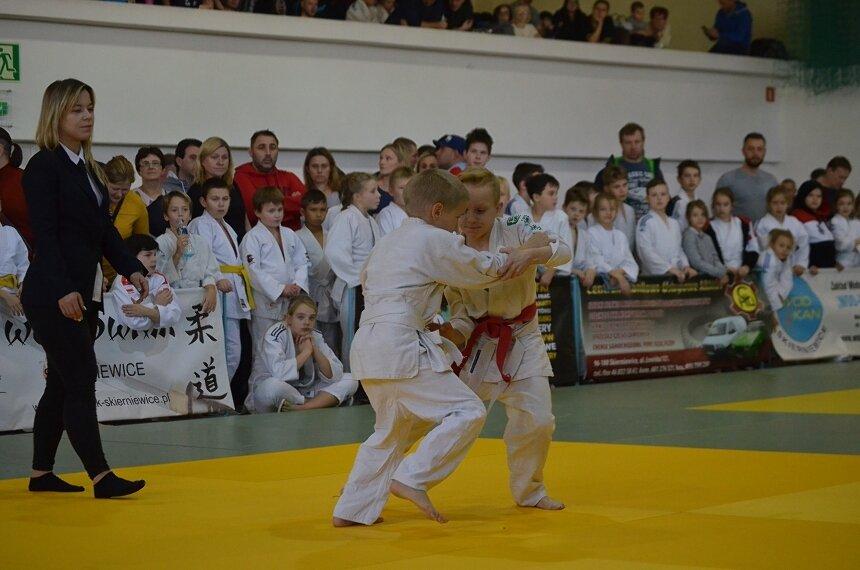 Blisko 300 dzieci wzięło udział w Ogólnopolskim Turnieju Dzieci w Judo o Puchar Banku Spółdzielczego w Skierniewicach.
