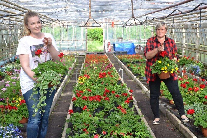Aleksandra i Wiktoria uwielbiają doglądać swoje kwiaty.