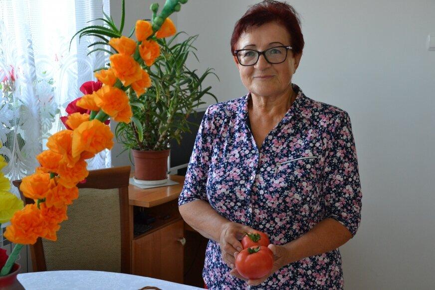 Prezes Wioski Pomidorowej Teresa Stępniak jeszcze nie wie czy w tym roku będzie Święto Pomidora.