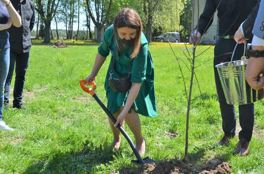 """Wybrali idealne miejsce na """"owoce pamięci"""". Posadzili drzewa, których trudno szukać w dzisiejszych sadach"""