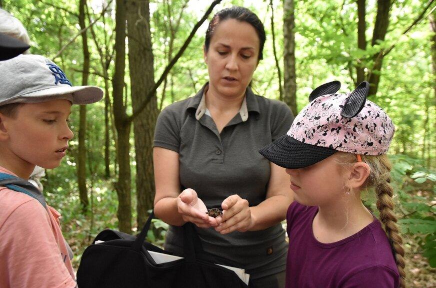 Uczestnicy mieli szczęście - na ścieżce spotkali jednego z najmniejszych mieszkańców parku.