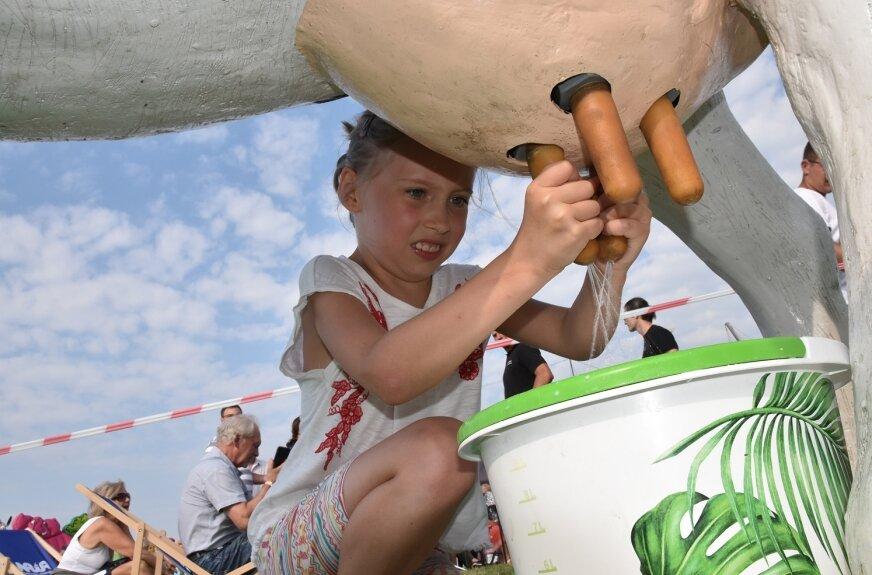 Dojenie krowy w tradycyjny sposób – tej sztuki mogli spróbować najmłodsi biesiadnicy.