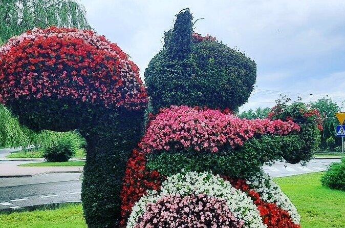 """""""Taką piękną, ogromną wiewiórkę spotkaliśmy ostatnio w Rawie Mazowieckiej"""" – zdjęcie kwietnika w kształcie wiewiórki znalazło się na profilu społecznościowym """"Warszawskie wiewióry"""""""