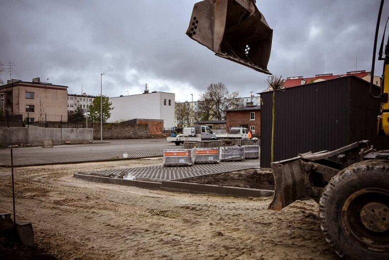 Są już drzewa przy nowym parkingu na Jagiellońskiej